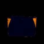 ALVIERO MARTINI – BORSA A TRACOLLA  BLU + GEO –  GQ25   – SS21